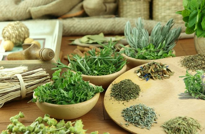 Мочегонные травы для похудения противопоказаны при заболеваниях мочеполовой системы
