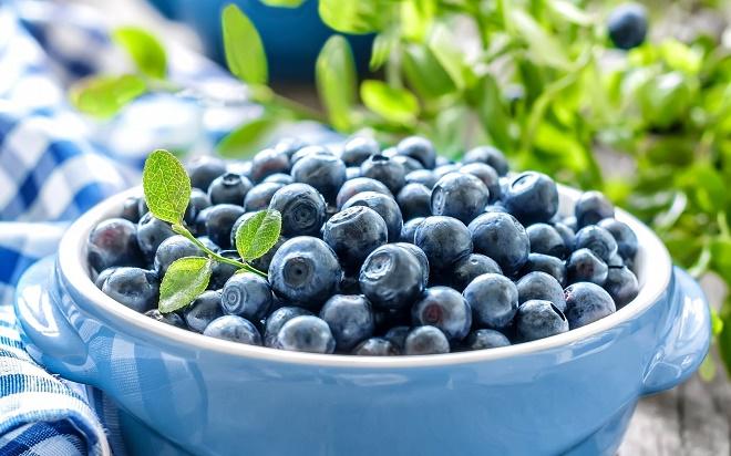 Плоды имеют целебное воздействие на организм
