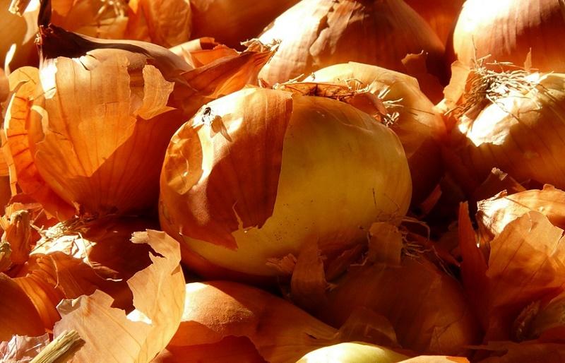Польза и вред луковой шелухи для печени и организма в целом