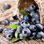 В чем польза от ягод черники для здоровья человека?