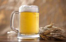 От чего пиво лечит?