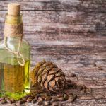 Кедровое масло - лечебные свойства и противопоказания